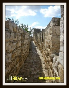 one stone wall pict