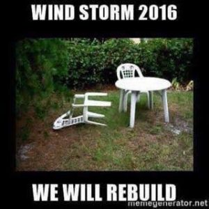 windstorm-meme
