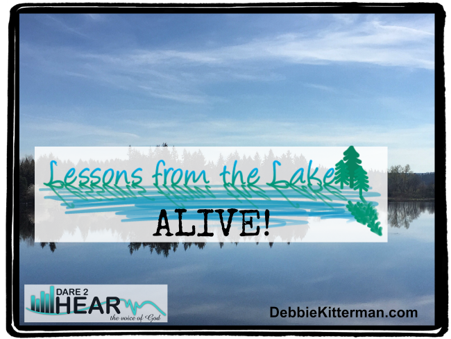 Alive! Vlog #26 Lessons from the Lake