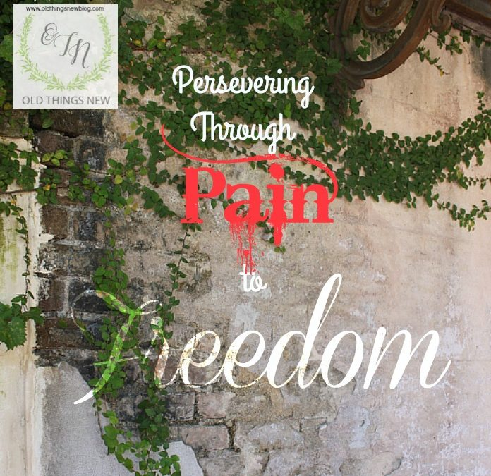 Persevering through Pain to Freedom  – Part 7 in the Perseverance Series