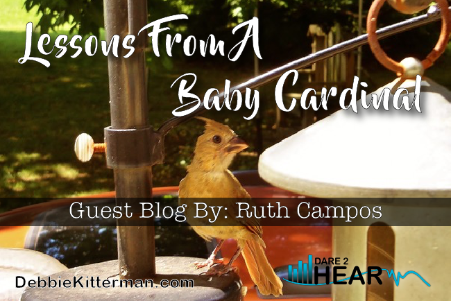 Lessons from a Baby Cardinal & Tune In Thursday #24 Guest: Ruth Campos